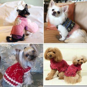 犬、ニット、編み物教室