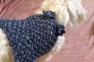 犬,ニット,編み物,無料メルマガ