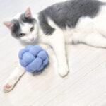 ワンちゃん•ネコちゃんのボールのおもちゃ